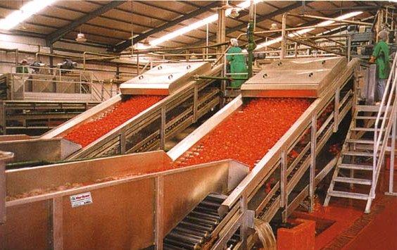 Salça Üretim Teknolojisi